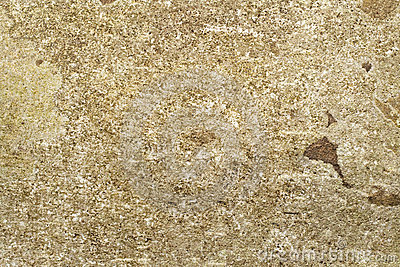 Old mossy stone background