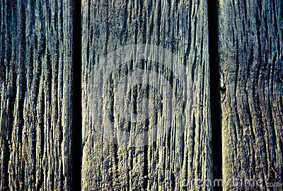 Old natural wood texture background