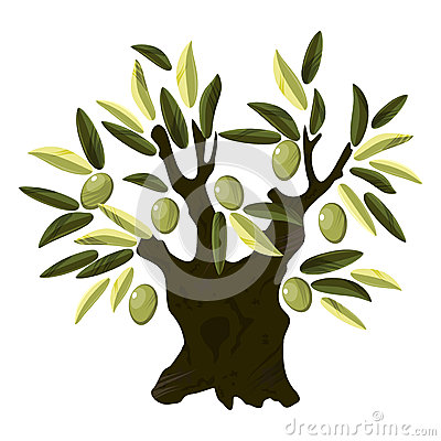 Free Old Olive Tree Royalty Free Stock Photos - 27595968