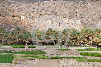 Old Omani village