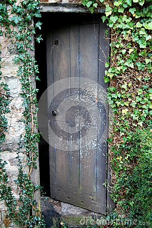 Old Open Wooden Door Overgrown With Ivy Royalty Free Stock ...