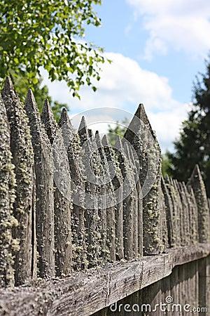 Old palisade