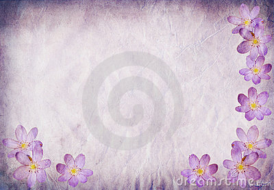 Old paper background blue with floral elements