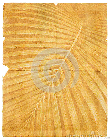 Old paper with page torn textured palm leaf
