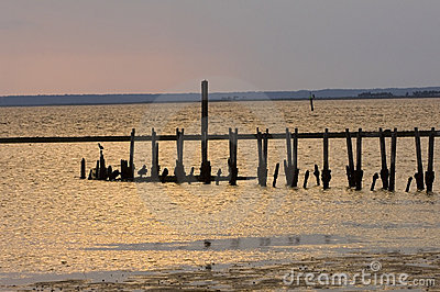 Old pier on the shore of the Gulf of Mexico