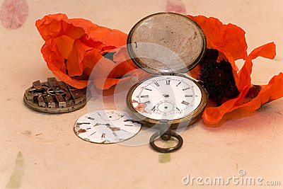 Old pocket watch and poppy
