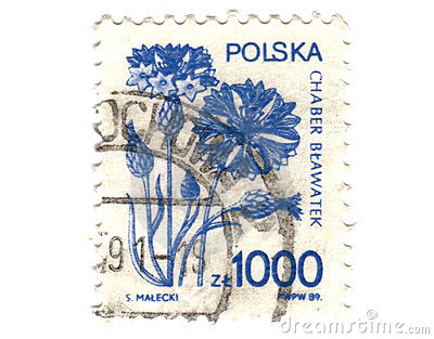 Old polish stamp with flower