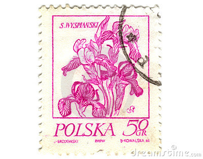 Old polish stamp with orchid