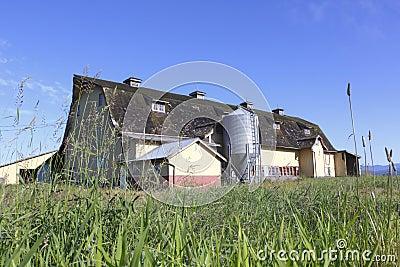An Old Prairie Barn
