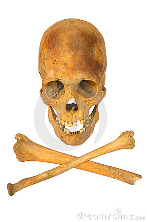 Free Old Prehistoric Human Skull Isolated Stock Photos - 7857563