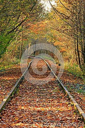 Old rail track