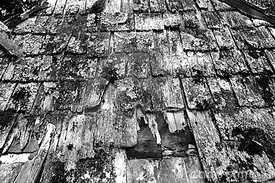 Old Roof - Black and White