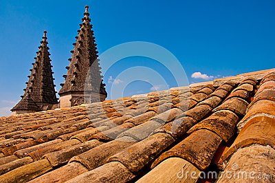 Old roof with pointy little towers
