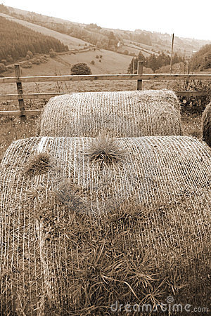 Free Old Round Bales In Irish Countryside Stock Image - 24025911