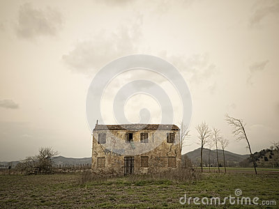 Old ruin in a field
