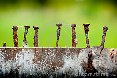 Old and rusty nails