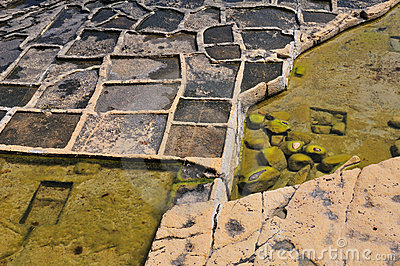 Old salt ponds