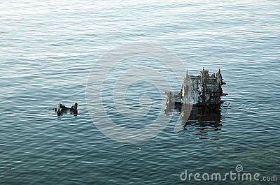 Old shipwreck