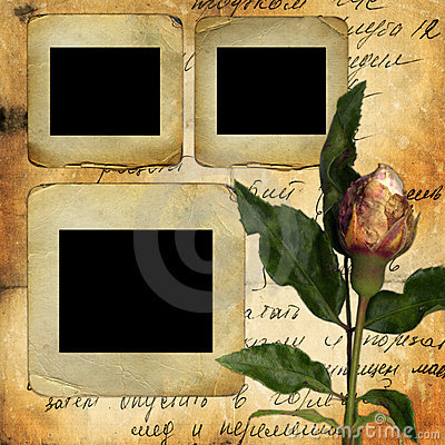 Old slides for photo with old rose