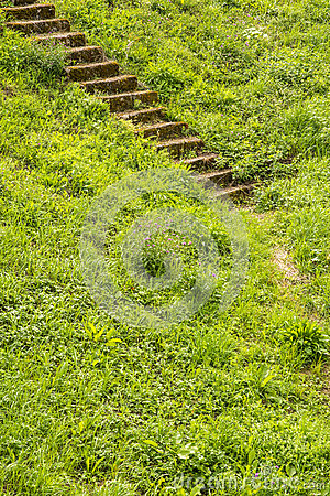 Free Old Stairs In The Green Royalty Free Stock Photography - 59185187