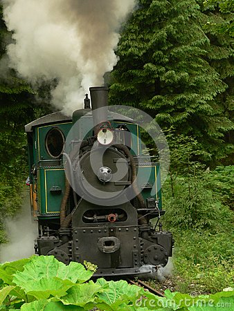 Free Old Steam Engine Train Royalty Free Stock Photos - 25836768