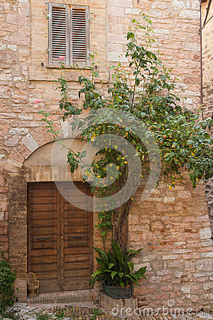Old stone house with plants stock photo image 51205388 for Classic house plants