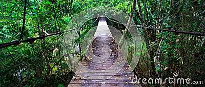 Old suspension bridge across the river