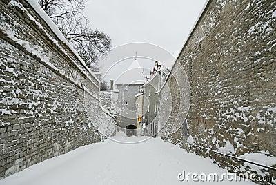 Old Tallinn, Estonia, winter