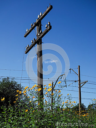 Free Old Telegraph Poles On The Railroad. Rural Landscape. Stock Images - 99228114