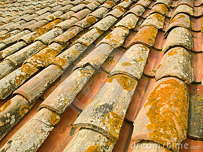 Old terracotta roof tiles