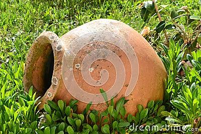Terracotta vase on the lawn