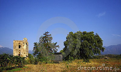 Old tower and ruins   in corsica farmland