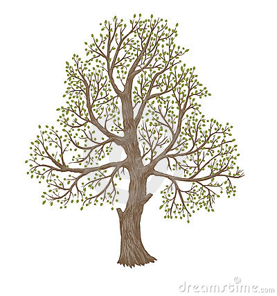 Old  Tree Royalty Free Stock Photos - Image: 17233528