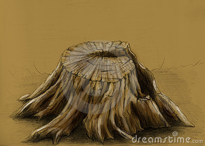 Old tree stump - sketch