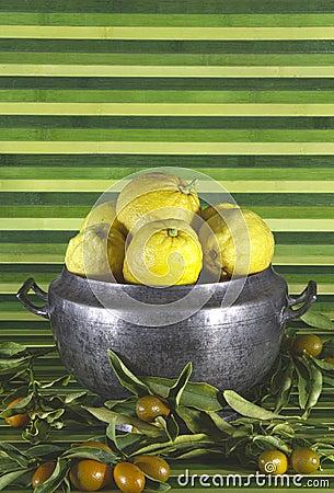 Old tureen with lemons,mandarins,green background