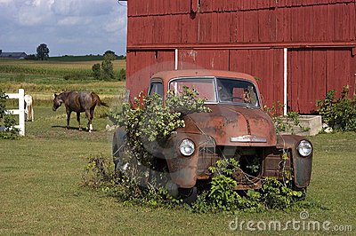 Old Vintage Farm Truck by Barn and Horse
