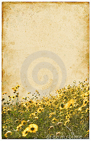 Free Old Vintage Flowers Royalty Free Stock Images - 6744909