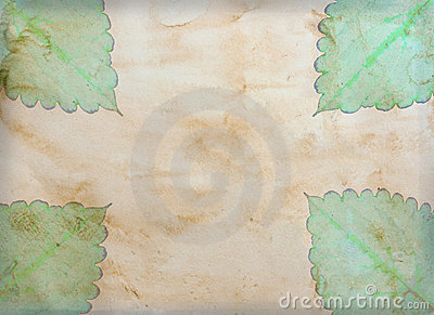 Old vintage paper with leave