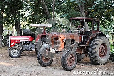 Old vintage tractors in field