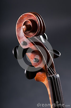 Old Violin head  on gray background