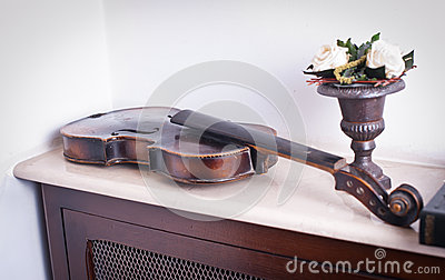 Old violin near a flower vase with roses