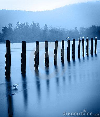 Free Old Wharf Posts - Artistic Stock Images - 4156664