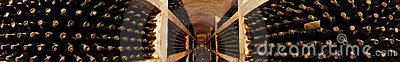Old wine collection in wine cellar