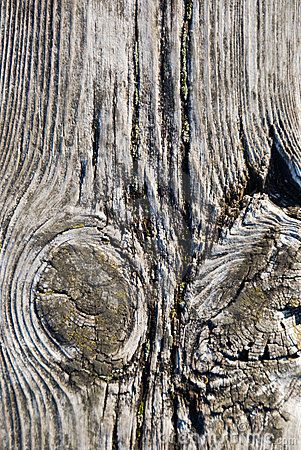 Free Old Wood Stock Images - 3657584