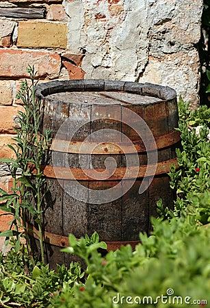 Old wood cask