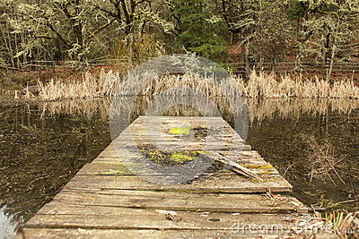 Old wood dock
