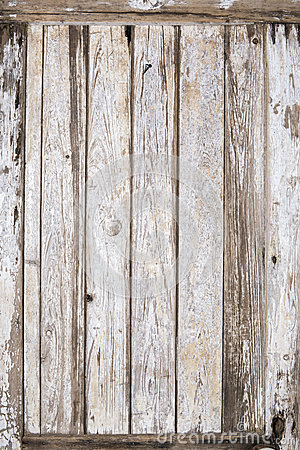 Old wood door painted background