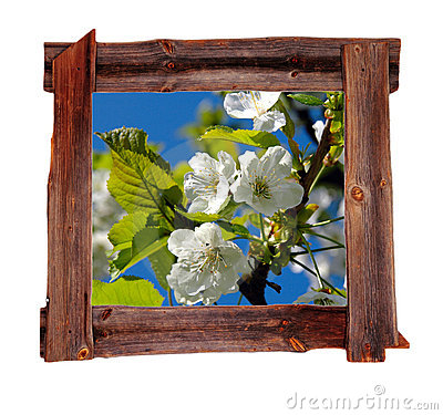Old wood frames Spring
