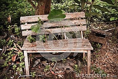 Old wood garden Bench,