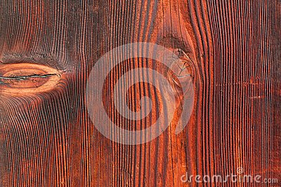Old wooden door texture